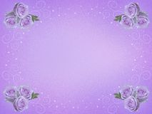 Frame of flowers. royalty free stock photography
