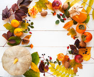 Frame from vivid colorful autumn leaves, natural seasonal backgr Stock Image