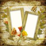 Frame voor foto met bloemen en vlinders royalty-vrije stock foto's