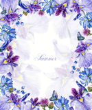 Frame of watercolor blue irises, butterflies, cornflowers, blueb Royalty Free Stock Image