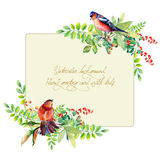 Frame of watercolor colorful bird and some leaves, berries. Stock Photography