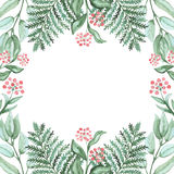 Frame With Watercolor Fern And Red Berries. Frame With Watercolor Green Fern And Red Berries Royalty Free Stock Photos