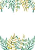 Frame With Watercolor Green And Yellow Leaves Royalty Free Stock Photos