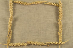 Frame of wheat ears on linen napkin Royalty Free Stock Images