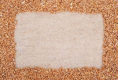 Frame of wheat on sacking. Background for design stock image