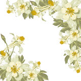 Frame with white blooming flowers. Place for your text. Ornate vintage greeting card template Stock Image