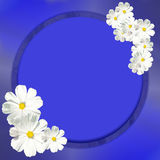 Frame with white flowers. Stock Photos