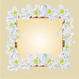 Frame with white Rhododendron vector Stock Photo