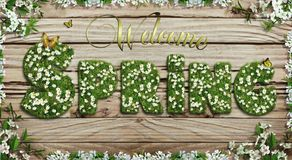 Welcome Spring text with white flowers on green grass texture letters on wooden rustic background. Frame with white spring flowers and text welcome spring with Stock Photos