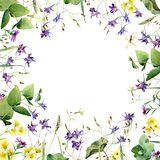 Frame of wild flowers and herbs vector illustration