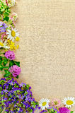Frame of wild flowers on sackcloth 1 Stock Photo