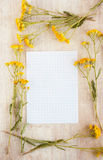 Frame of wild flowers for writing Royalty Free Stock Photo