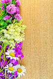 Frame of wildflowers on board. Frame of flowers of clover, chamomile, fireweed and meadowsweet on the background of a wooden board Stock Photography