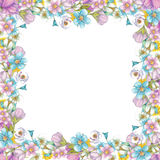 Frame of wildflowers Royalty Free Stock Photo