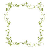 Frame With Green Creepers Nature Design Stock Images