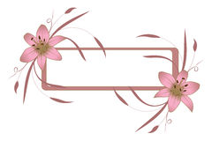Frame With Pink Lily Royalty Free Stock Images