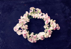 Frame wreath of sweet peas. On black worn table, top view, greeting card, vintage style Royalty Free Stock Image