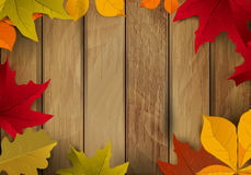 Frame from yellow autumn leaves on wooden background. Design ele Royalty Free Stock Photo