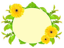 Frame with yellow flowers Stock Photo