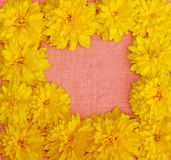 Frame of yellow flowers against a background of pink cloth Royalty Free Stock Photos