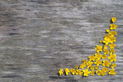 Frame of yellow flowers on a wood background Stock Photography