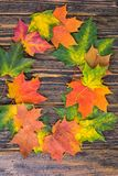 Frame of yellow, green and red autumnal colored maple leaves on wooden background. Fall foliage Royalty Free Stock Photo