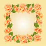 Frame with yellow hibiscus vector Stock Photos
