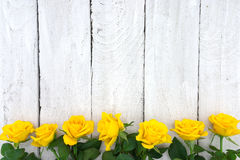 Frame of yellow roses on white rustic wooden background. Valenti Stock Image
