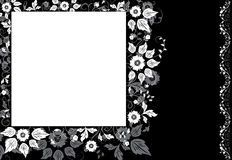 Framed background flower, elements for design, vector. Illustration Royalty Free Stock Photography