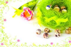 Framed card of easter eggs in Royalty Free Stock Photo