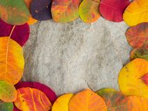 Framed colorful autumn leaves background on the. Colorful autumn leaves background on the stone Royalty Free Stock Photo