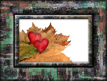 Framed fall Stock Photography