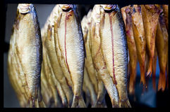 Framed Fish. Detail of detail of some smoked fish Stock Photos