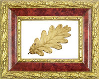 Framed gilded oak leaf Royalty Free Stock Images