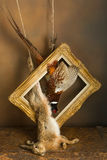 Framed hunting still life. Antique old master hunting still life with pheasant and hare Stock Photography