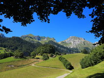 Framed swiss Alpine scenery at summer Royalty Free Stock Images