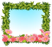 A framed leaves with pink flowers Royalty Free Stock Image