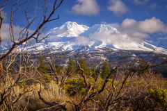 Framed. Mt. Shasta framed with branches. Mt. Shasta is a potentially active volcano in Northern California, USA. The snow covered mountain is a spiritual beauty stock photography