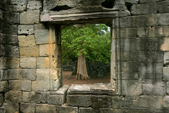 Framed nature. A tree outside a window of an ancient stone wall in Siem Reap, Cambodia stock photos