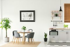 Framed photo on a white wall in an open space dining room and kitchen interior with modern, wooden furniture and plants