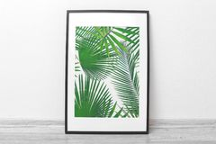 Framed picture of tropical leaves. On white wall background Stock Photos