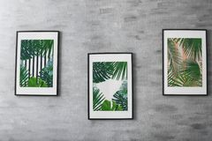 Framed pictures of tropical leaves. On grey background Royalty Free Stock Image