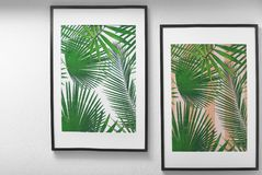 Framed pictures of tropical leaves. On white wall Stock Photos