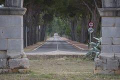 Framed road. Royalty Free Stock Photo