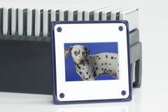 Framed slides. Plastic slides archive in detail. Shot in studio Royalty Free Stock Photos