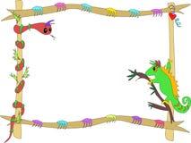 Framed Snake and Chameleon Stock Images