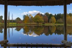 Framed view of autumn colored trees stock image