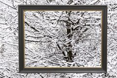 Framed view of the winter snow Stock Photography