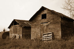 Framers shack. An old worn building on a farm Royalty Free Stock Image