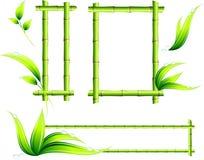 Frames de bambu Foto de Stock
